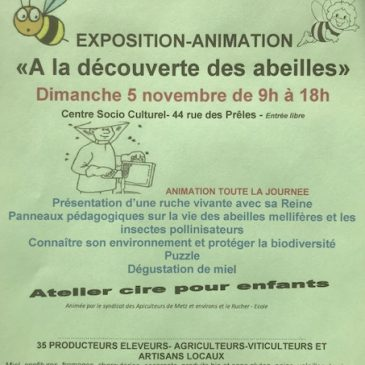 Exposition sur les Abeilles et Atelier Cire pour les enfants
