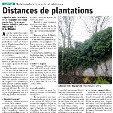 Distances de plantations